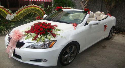 Xe cưới IS 250 Lexus mui trần