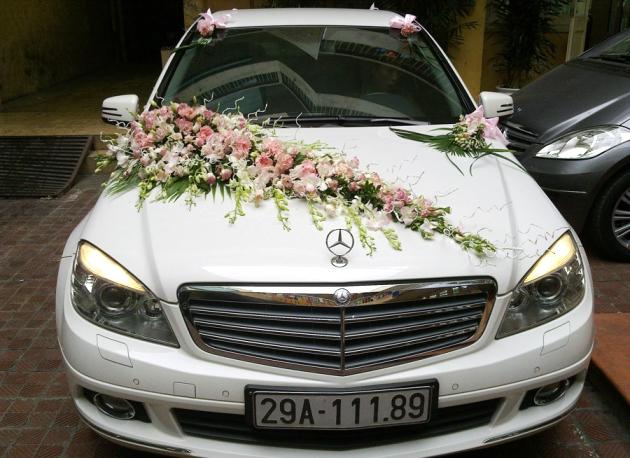 Hình ảnh mẫu xe tại thuexedidulich.com